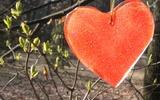 O sztuce wyrażania miłości